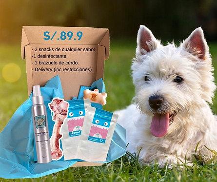 Pack Dog Houser Premium