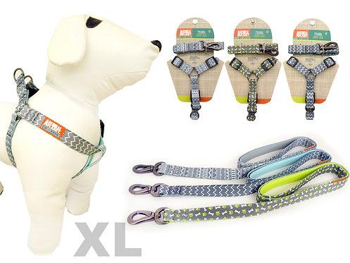 Pack Collar y correa Talla XL
