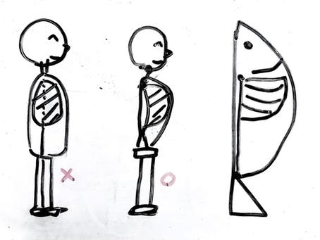 間違えた「肺」と「肋骨」の位置
