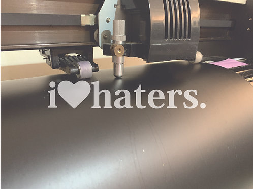 I LOVE HATERS.