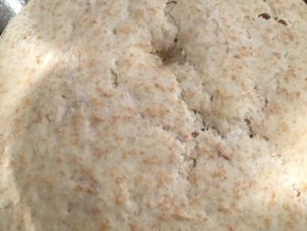 小麦酵母 (老麺)