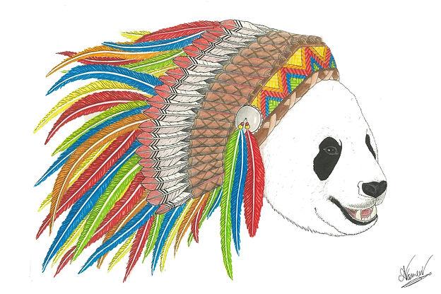 panda colorz.jpg