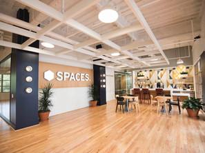 Spaces: Calabasas