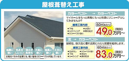 p_roof.jpg