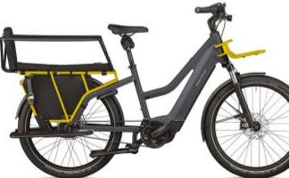 The Electric Bike Revolution