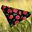 Thumbnail: Just Poppies