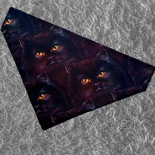 Black Cat Bandana