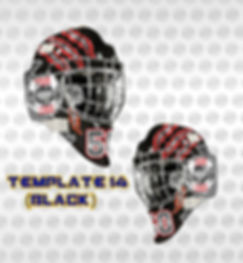 TEMP14b.jpg
