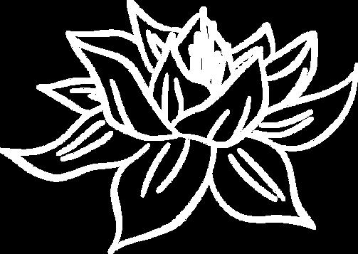 lotuswhite.png