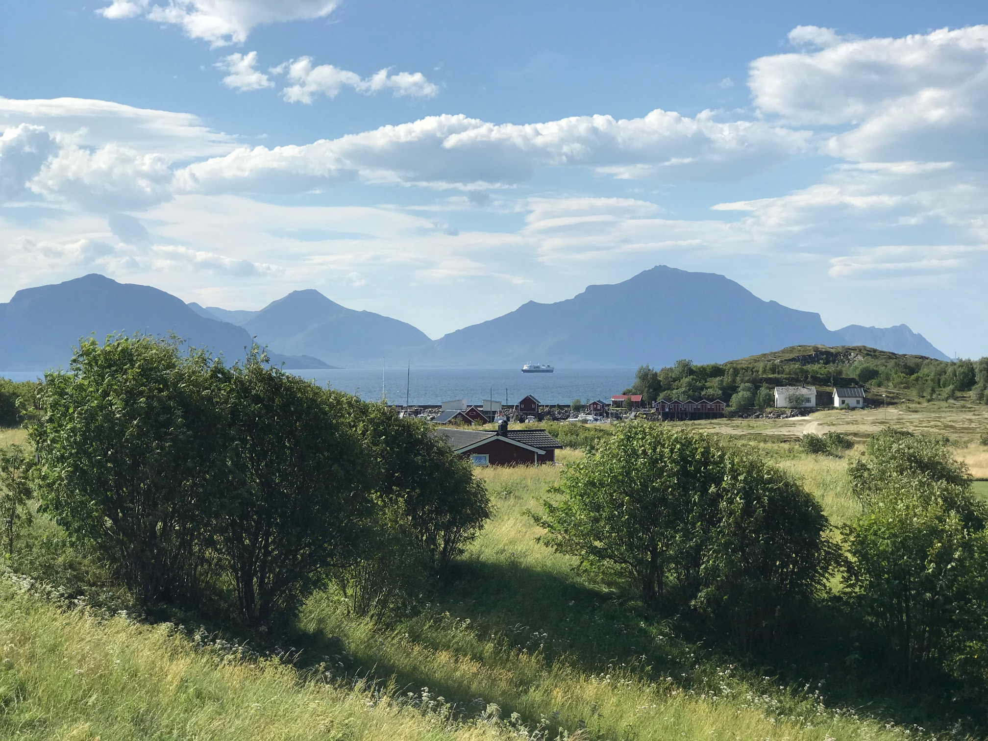Sørfugløy juli 2018