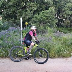 HB61 Bikes