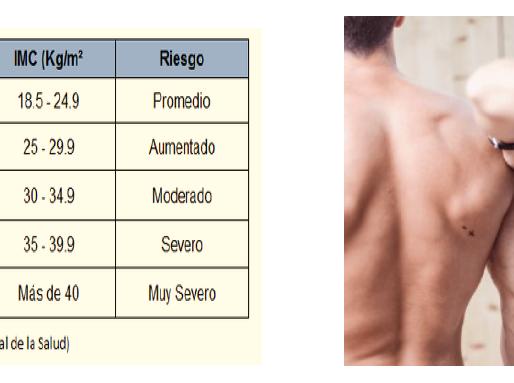 La importancia de la composición corporal