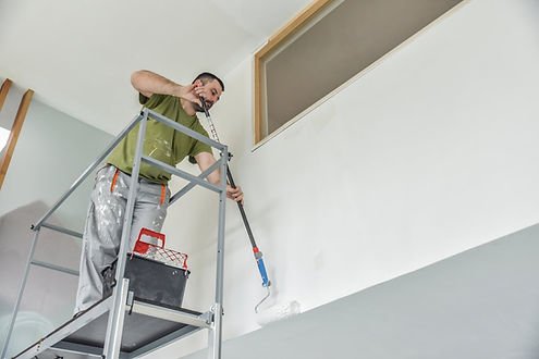 bearded man on a ladder business paintin