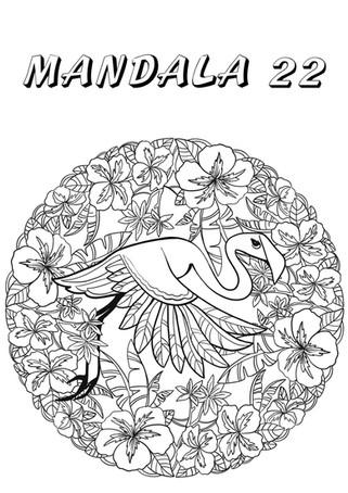 mandala 22.jpg