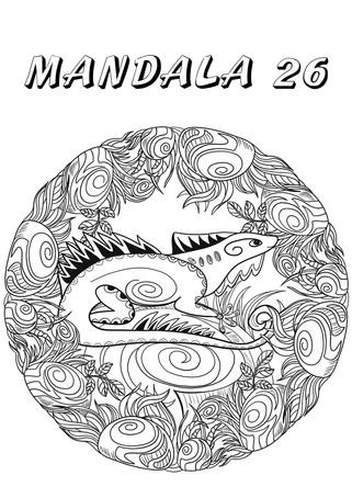 mandala 26.jpg