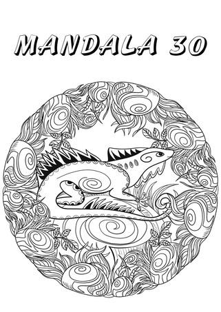 mandala 30.jpg