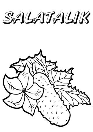 salatalık.jpg