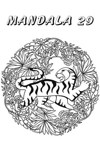 mandala 29.jpg