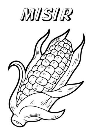 mısır.jpg