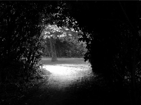 Seeking light in the tunnel of grief