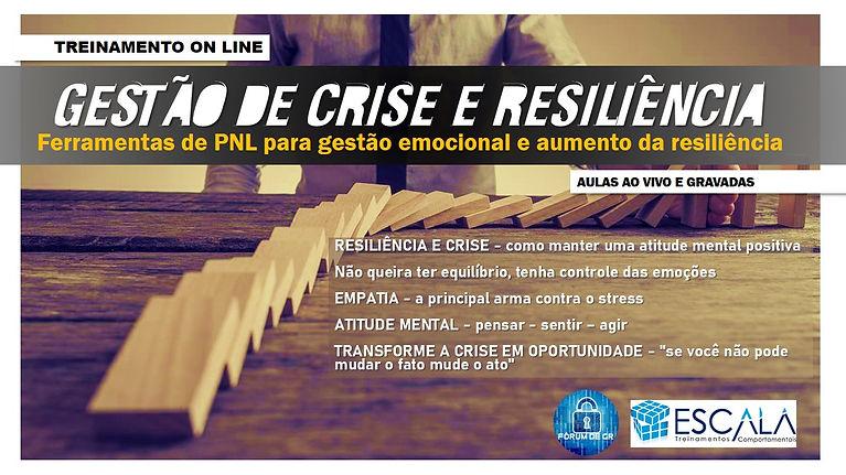 Treinamento Crise e Resiliencia.jpg