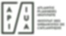 New API Logo.PNG