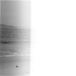 Untitled2-copiar-3.png