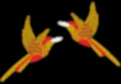 Oiseaux-Accords-Transparent-1165.png