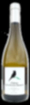 Wine bottle Terre des 2 Sources Domain de la Deveze Monnier AOP Languedoc blanc 2018
