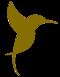 Oiseaux-Caprices-Transparent-900.png