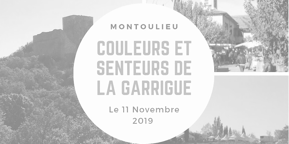 Colour and Scents of the Garrigue -Past Event