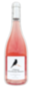 Wine bottle Terre des 2 Sources Domain de la Deveze Monnier AOP Languedoc rose 2018