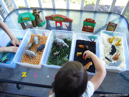 SIMPLE TO MAKE ZOO SENSORY BINS
