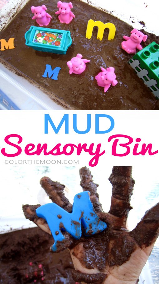 mud-sensory-bin-pin