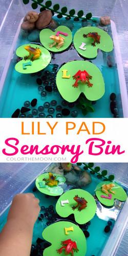 lily-pad-sensory-bin-pin