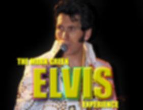 ELVIS-banner.jpg