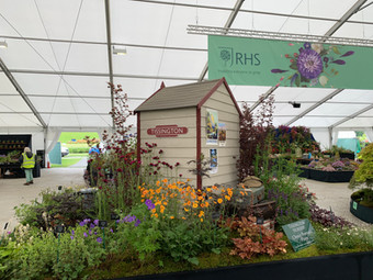 RHS Chatsworth 2019