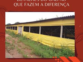 DETALHES DO GALPÃO QUE FAZEM A DIFERENÇA