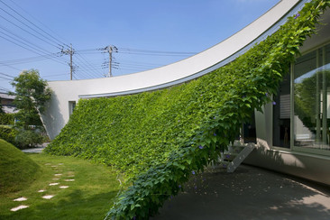 Green Screen House: una protección solar natural
