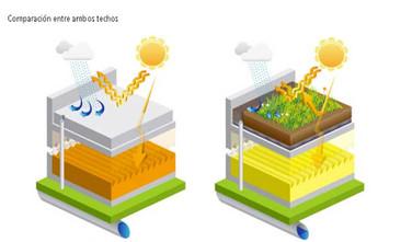 Los techos en Francia deberán estar cubiertos de plantas o paneles solares