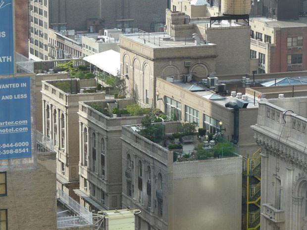 techos-verdes-15.jpg