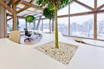 30 formas para tener una oficina más ecológica (Parte 2)