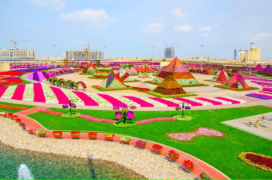 Dubai-Miracle-Garden-35.jpg
