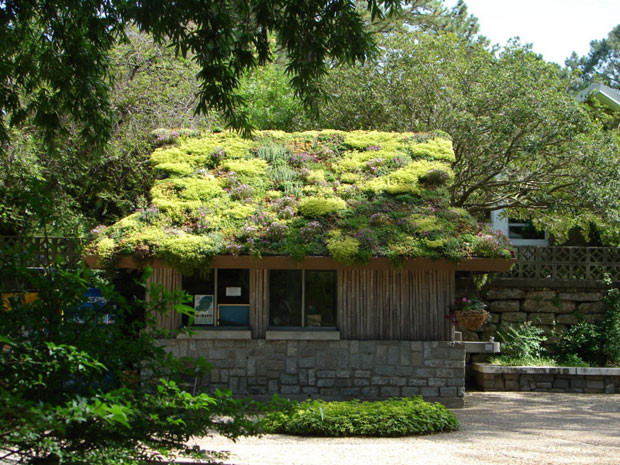 techos-verdes-17.jpg