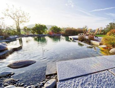 Albercas sustentables llenas de ecología y diseño