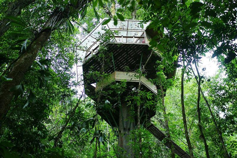 hotel-de-casas-colgantes-de-los-arboles-en-costa-rica-lomasviral-2.jpg