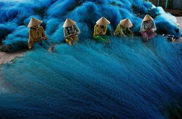 """Las mejores fotografías del concurso """"Fotógrafo Ambiental del Año"""" 2014"""