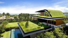 9 Razones para tener un techo verde