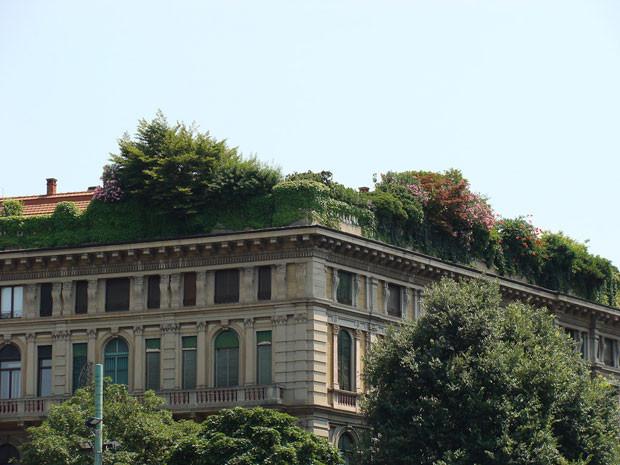 techos-verdes-10.jpg