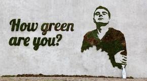 ¿Qué es el graffiti ecológico?